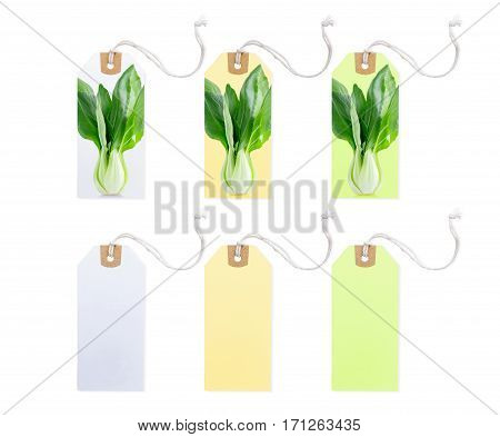 Collection of Price Tag with Vegetable photo different color and empty page isolated on white background.