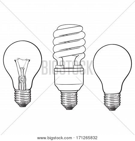 Set of transparent, opaque, glowing and energy saving spiral electric bulb, sketch style vector illustration isolated on white background. hand drawing of round and spiral light bulbs