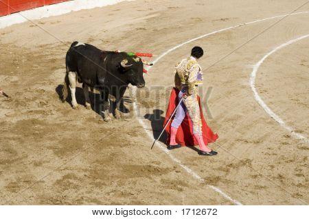 Corrida Bullfighting