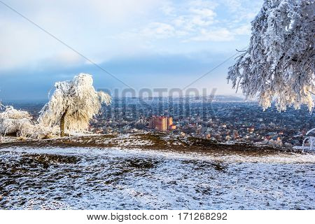 Winter landscape, the frozen trees in white snow, a beautiful view of the city of Pyatigorsk