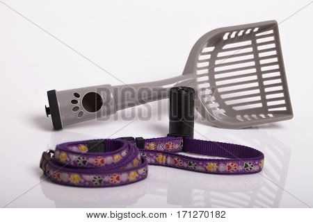 Accessories for walking dog Selective focus and small depth of field