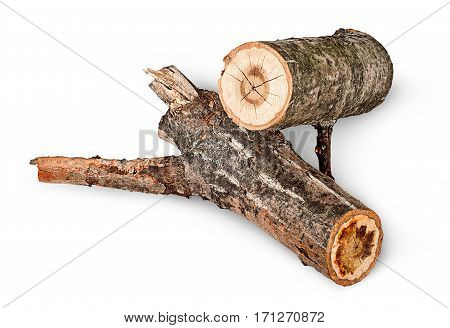 Two poplar logs rotated isolated on white background