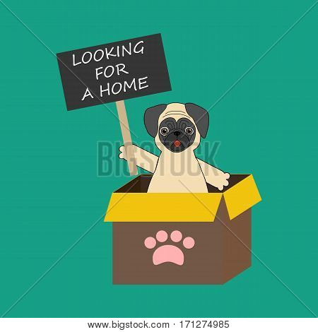 Dog on demonstration. Pug with transparency. Looking for a home. Vector illustration