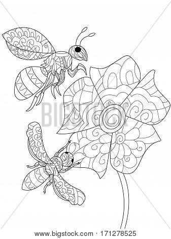 Bee on a flower animal coloring book for adults vector illustration. Anti-stress coloring for adult. Zendoodle style wasp. Black and white lines. Lace pattern insect