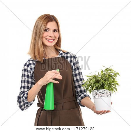 Beautiful female florist holding house plant and sprayer isolated on white background