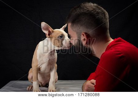 Pure love between man and american stafford puppy.