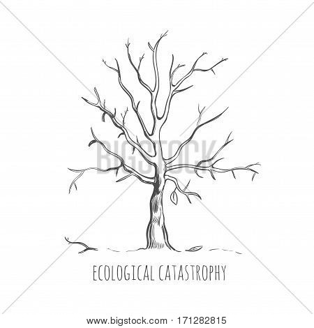 Bad ecology sketch concept with bare dead dried tree without leaves on white background isolated vector illustration