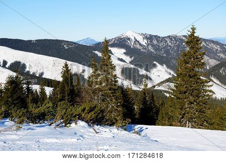 The view on mountains in Jasna Low Tatras Slovakia