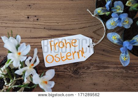 Label With German Text Frohe Ostern Means Happy Easter. Spring Flowers Like Grape Hyacinth And Crocus. Aged Wooden Background