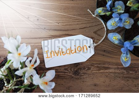Sunny Label With English Text Invitation. Spring Flowers Like Grape Hyacinth And Crocus. Aged Wooden Background