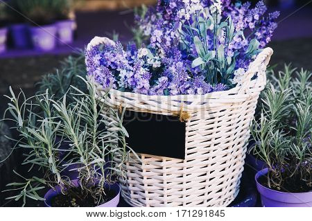 Basket with a lavender and blank note for message in a flower shop