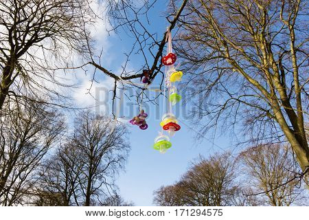 Colourful plastic pacifiers hanging in a tree when children stop using them. Jagerspris Denmark - February 13 2017. Jagerspris Denmark - February 13 2017