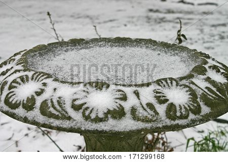 a light dusting of snow on a birdbath makes the cement flowers and leaves stand out