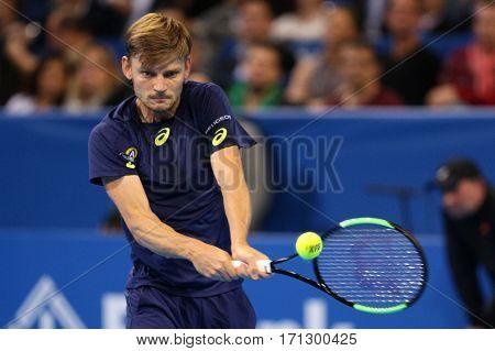 Tennis Player David Goffin