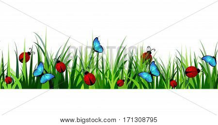 Green Grass seamless isolated clip art vector on white with blue butterflyes and ladybugs