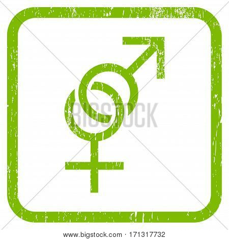 Sex Symbol rubber watermark. Vector icon symbol inside rounded rectangular frame with grunge design and scratched texture. Stamp seal illustration. Unclean light green ink sign on a white background.