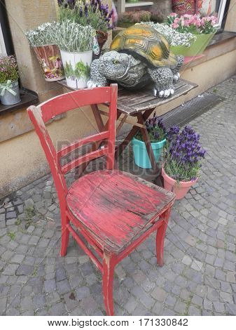 Red wooden chair in front of Lavendar
