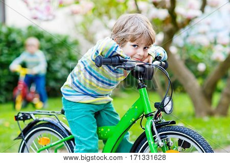 Two little kids boys driving and running on bike or laufrad in park or garden on warm spring day. Happy children having fun. Active leisure for kids outdoors on spring day. Siblings, family, friends