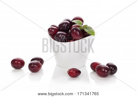 Fresh cranberries isolated on white. Healthy fruit eating.