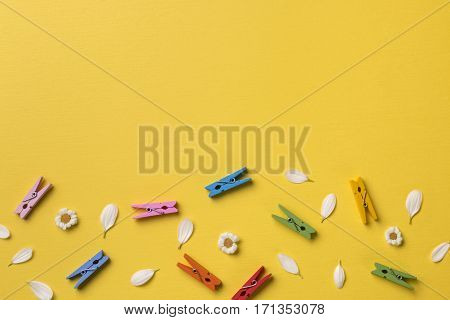 Spring or summer background with copy space for text from top: chamomiles petals and bright multicolored clothespins. Top view. Flat lay.