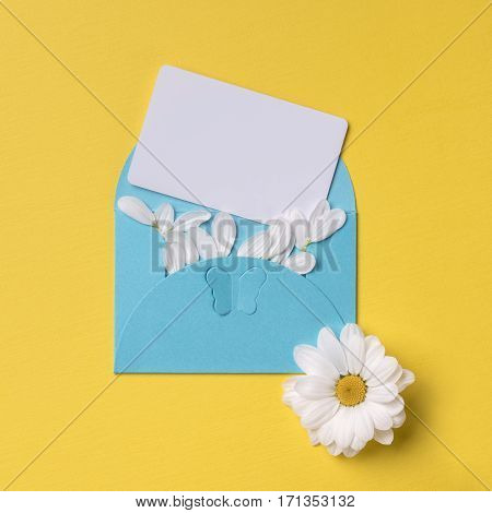 Spring or summer background with copy space for text: cyan envelope with butterfly contains business / credit / visiting card mockup and petals white flower with yellow heart. Top view. Flat lay.