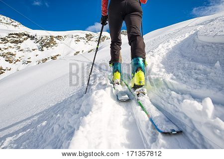 Walking With  Sealskins With Climbing Skins
