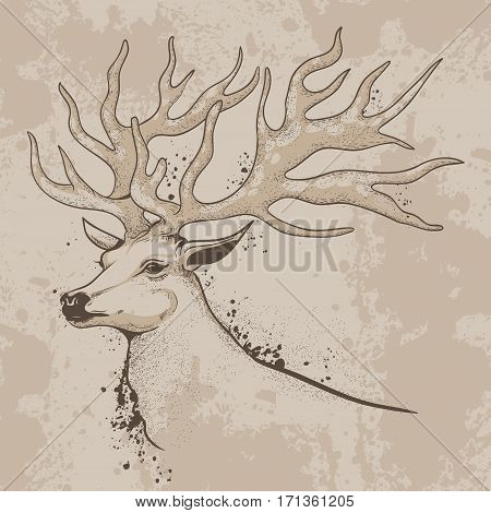 vector illustration, drawing, sketch ink deer head with antlers in vintage style background texture
