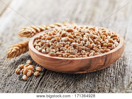 Wheat sprout with ear on a wooden board