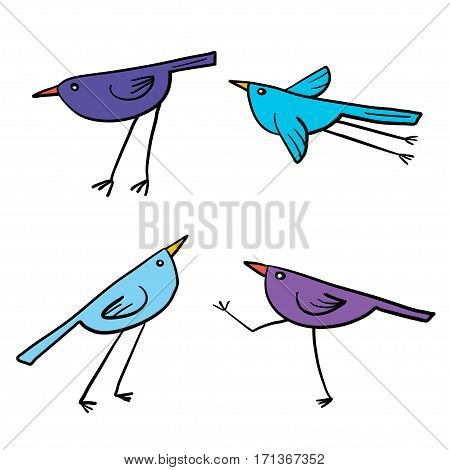 Set of 4 cute birds isolated in white in vector. Cartoon colorful funny little birds.