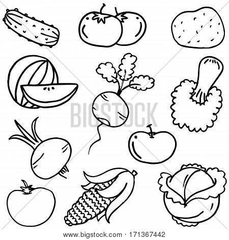 Doodle of vegetable set hand draw collection stock
