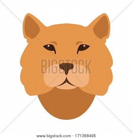 cougar head face  vector illustration style Flat