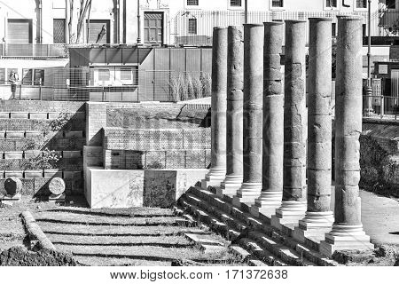 a colonnade of imperial forum in Rome