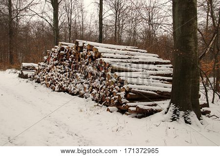 Offbeat Firewood Stack with snow on a cloudy day but lovely