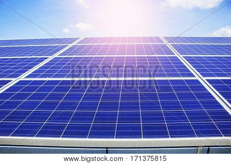 Solar of panels on the blue sky.