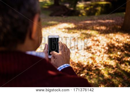 Cropped image of man using cellphone in park