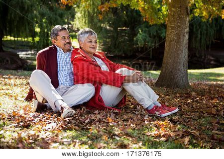 Contemplated happy mature couple sitting on autumn leaves at park
