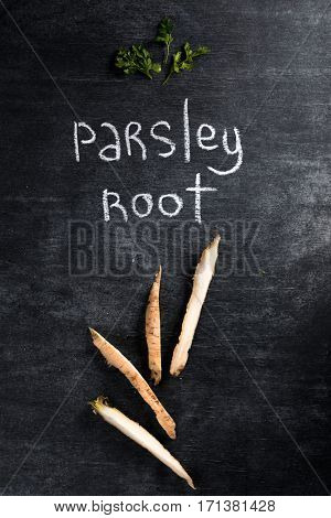 Top view picture of parsley root over dark chalkboard background.