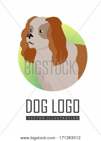 Brown and white spaniel dog, round logo on white background. Dog icon. Vector illustration in flat style. English cocker spaniel design. Cartoon dog character, pet animal.