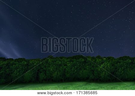 Night Forest Background. Night Starry Sky. Night Sky With Stars.