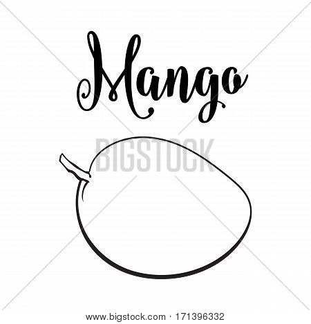 Whole unpeeled, uncut sweet mango tropical fruit in horizontal position, sketch style vector illustration isolated on white background. Realistic hand drawing of whole mango fruit