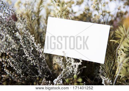 Floral Botany Name Card Background