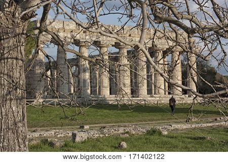The Temple of Athena at Paestum as Temple of Ceres understood as the concept of culture and education