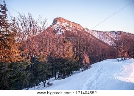 limestone rocky Klak hill in winter Mala Fatra mountains in Slovakia during sunset with snow, trees and clear sky
