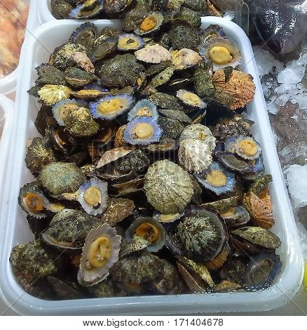 Seafood. Lapas grelhadas. Madeira's traditional dish and a typical snack on Canary Islands.