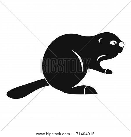 Canadian beaver icon. Simple illustration of Canadian beaver vector icon for web