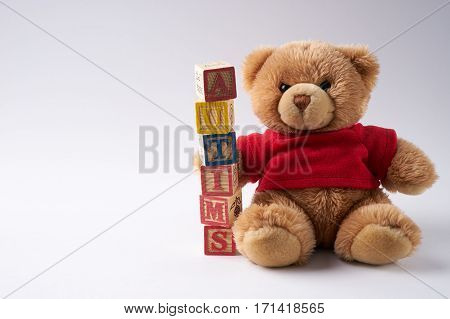 concept of autism word on wooden cubes and teddy bear soft toy against white background. Copy space