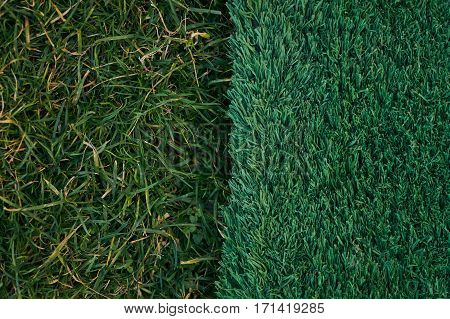 Green artificial and natural grass background .