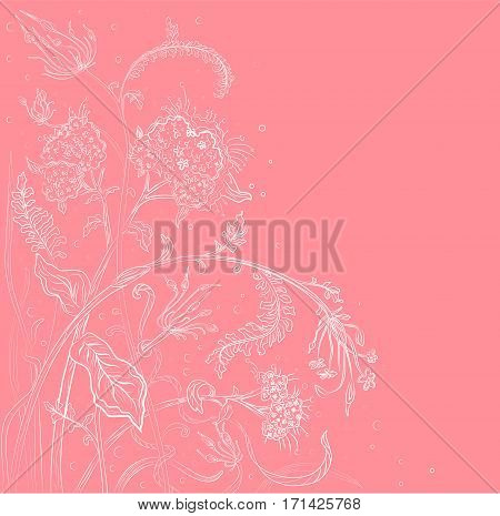 Vector floral blossom beautiful nature garden verbena flower pattern background with blooming plants hand drawn in white outline isolated pink background