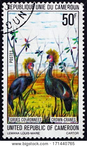 CAMEROON - CIRCA 1977: a stamp printed in Cameroon shows Black crowned crane balearica pavonina bird circa 1977