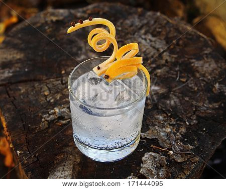 Gin Tonic with Grapefruit Super Twist Garnish